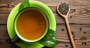 تولید کنندگان چای سبز