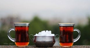 کارخانه تولید چای