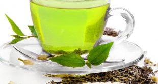 خرید چای سبز
