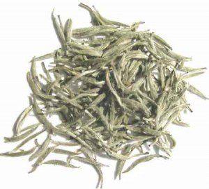 چای سفید لاهیجان