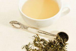 چای سفید شمال