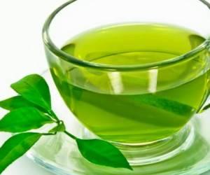 پخش جدید ترین چایی سبز