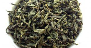 بازار خرید عمده چایی سبز