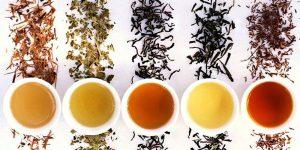 نمایندگی فروش بهترین چایی