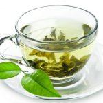 عرضه بهترین چایی سبز