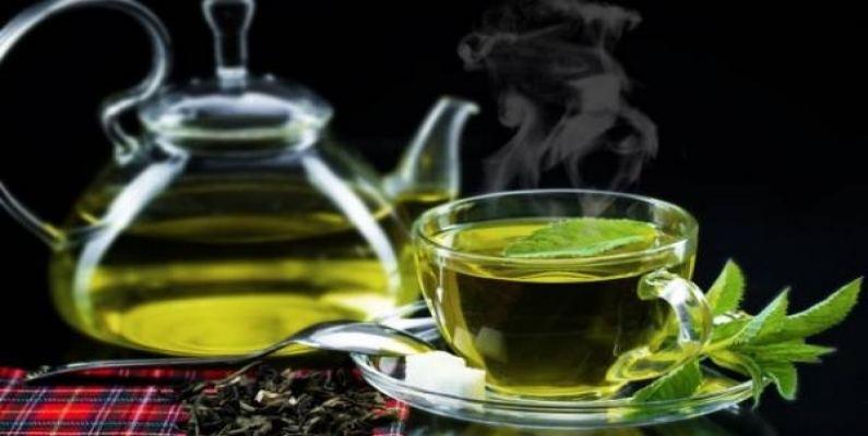 عرضه انواع چایی سبز
