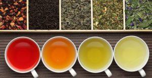 قیمت فروش جدید ترین چایی