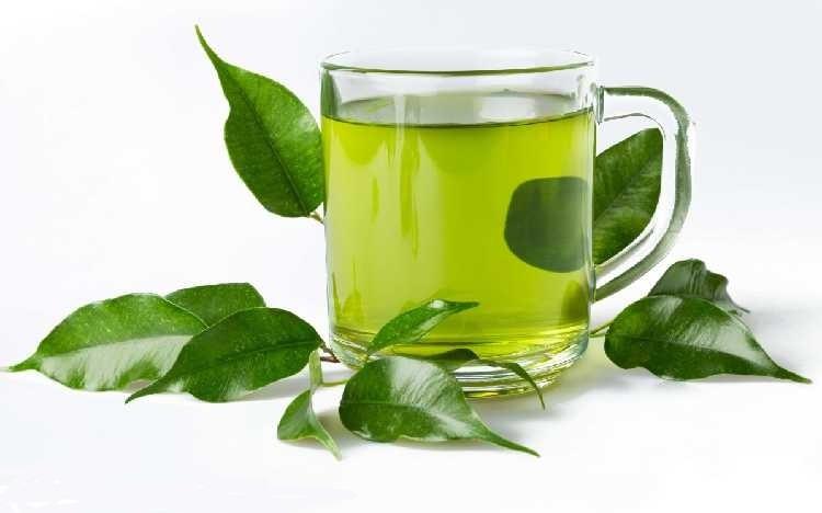فروشگاه عرضه چایی سبز