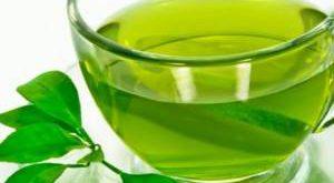 خرید و فروش جدیدترین چایی سبز