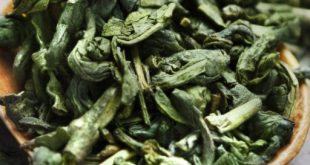 نمایندگی بهترین چایی سبز
